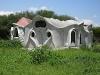 Organic sculpted home